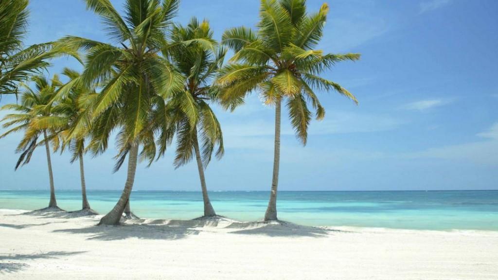 A typical white sandy Caribbean beach