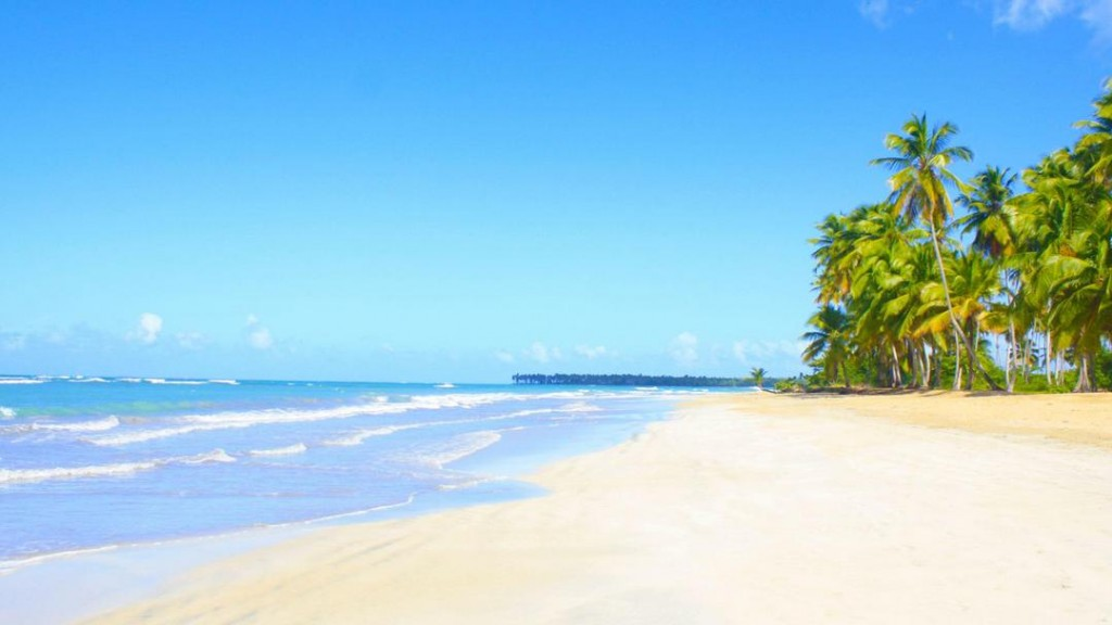 A pristine beach in the Dominican Republic