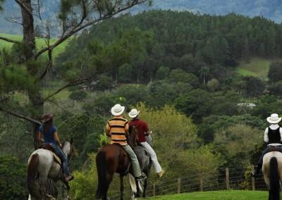 Horseback Riding in the Cordillera Central