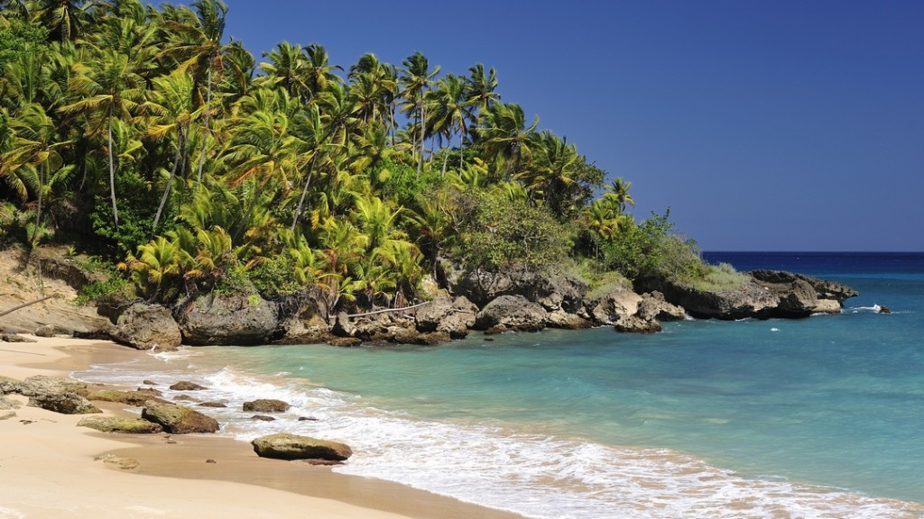 Beach with Palm Trees near Rio San Juan, Dominican Republic
