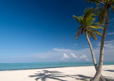 A pristine beach in Punta Cana