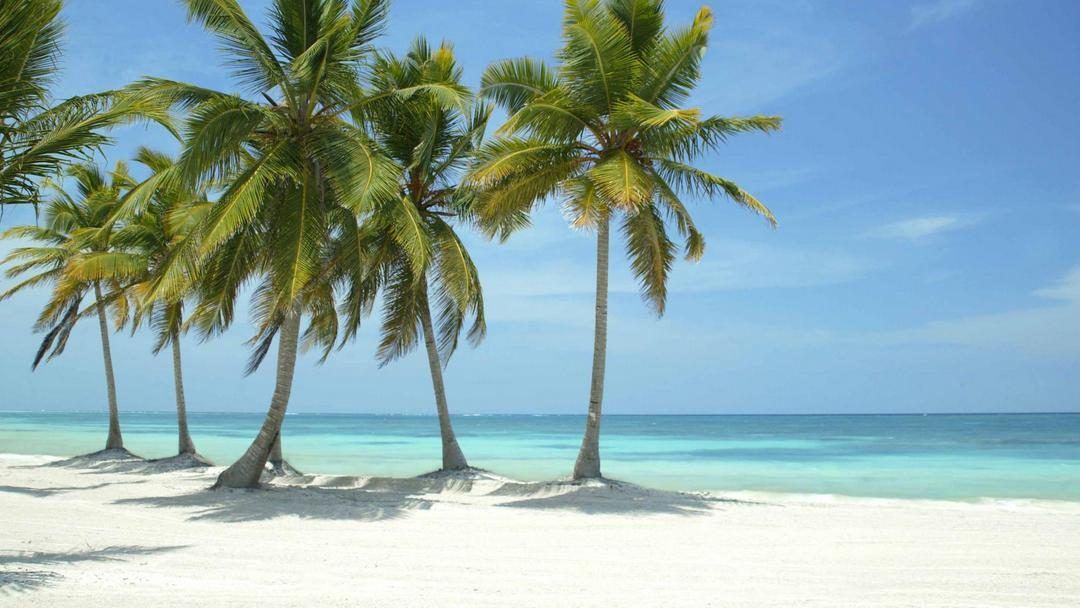 Beautiful beach in Punta Cana