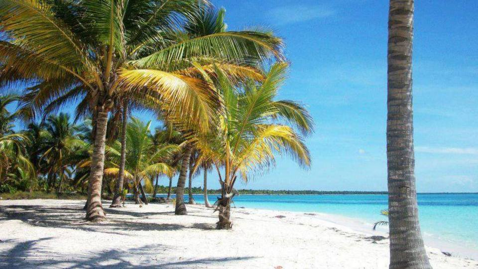 Destination Wedding On Saona Island Dominican Republic