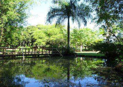 Botanic Garden in Santo Domingo