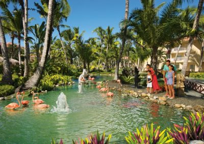 Flamingoes at the all inclusive hotel Dreams Punta Cana in the Dominican Republic